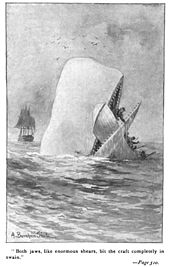 170px-Moby_Dick_p510_illustration