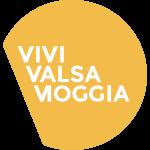 VVS35