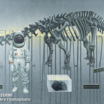 Gino Pellegrini - Museum of Natural History, 1972; Acrilico su tela, 84x124 cm.
