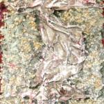 Andrea Raccagni, Sassi e stracci (1957)
